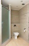 Het binnenland van de badkamers stock fotografie