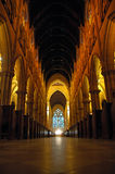 Het binnenland van de kathedraal royalty-vrije stock fotografie