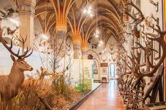 Het binnenland van het kasteel Vajdahunyad in Boedapest stock foto's