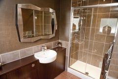 Het binnenlandse ontwerp van de badkamers Stock Afbeeldingen