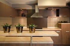 Het binnenlandse ontwerp van de keuken. Elegant en luxe. Royalty-vrije Stock Foto