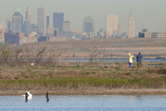 Het birding van het paar met de horizonachtergrond van Manhattan Stock Foto