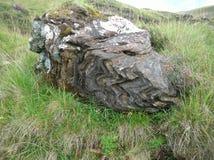 Het bizarre bekijken enige oude rotszitting in Groene Heuvels Glenshee-Vallei, Grampian-Bergen, Schotland royalty-vrije stock afbeeldingen