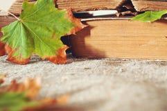 Het blad dichte boekt omhooggaand van de esdoornherfst van een wijnoogst op de lijst Royalty-vrije Stock Afbeeldingen