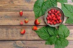Het blad van de de zomerbes van de frambozenaardbei stock foto