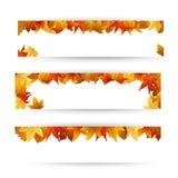 Het blad van de herfst De grootte van het beeld XXXL Stock Fotografie