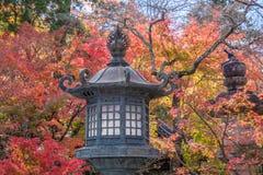 Het blad van de herfst De grootte van het beeld XXXL Royalty-vrije Stock Afbeelding