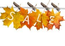 Het blad van de herfst voor verkoop Stock Afbeelding