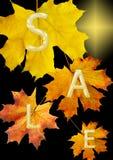 Het blad van de herfst voor verkoop Royalty-vrije Stock Foto's