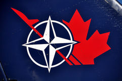 Het blad van de NAVO/van de esdoorn Canadain Stock Afbeeldingen