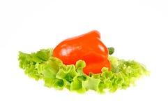 Het blad van de peper en van de salade stock foto's