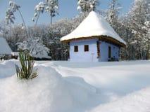 Het blad van de pijnboom in sneeuw Stock Afbeelding