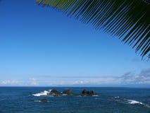 Het blad van Palmtree met seaview en rotsen royalty-vrije stock afbeelding