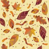 Het bladachtergrond van de herfst Stock Afbeelding