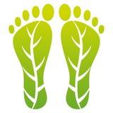 Het bladaf:drukken van de voet Stock Afbeeldingen