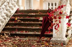 Het bladdaling van de herfst Achtergrond, digitaal art Rode en gele bladeren op vernietigde oude sto stock afbeelding