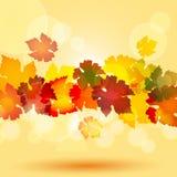 Het bladgrens van de herfst en gloeiende cirkels Stock Foto