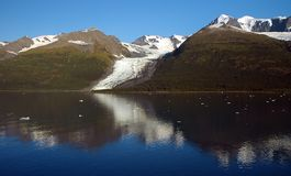 Het Blauw van de Baai van de gletsjer stock foto