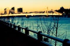 Het blauw van de de brugzonsondergang van Albert Stock Afbeeldingen