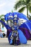 Het Blauwe Kostuum Royalty-vrije Stock Afbeeldingen