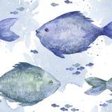 Het blauwe naadloze patroon van waterverfvissen Stock Afbeeldingen