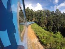 Het blauwe treinrit hangen uit venster in Sri Lanka Stock Foto