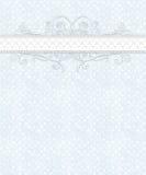 Het blauwe Witte Geruite Patroon, Kant, bloeit Stock Foto