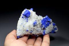 Het blauwe Zeldzame Minerale Specimen van Lazurite vector illustratie