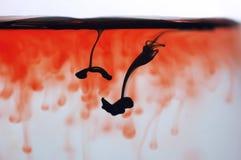 Het bloed van de inkt in water royalty-vrije stock afbeeldingen