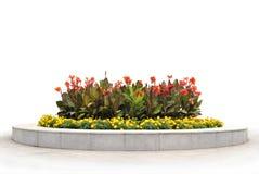 Het bloembed met rode en gele bloemen Royalty-vrije Stock Afbeeldingen