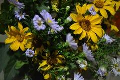 Het bloemboeket van mooie wilde Oekraïense wildflowers maakte met een ziel van het steppedeel van de Oekraïne royalty-vrije stock foto