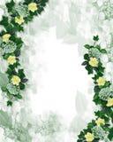 Het bloemen element van de het ontwerpuitnodiging van de Grens Stock Afbeeldingen