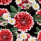 Het bloemen naadloze patroon met hand getrokken rode dahlia's en kamille bloeit met bladeren stock foto's