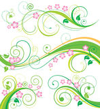 Het BloemenDecor van de lente Stock Foto