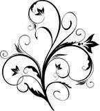 Het bloemenelement van het ontwerp Stock Afbeelding
