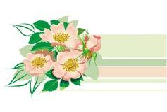 Het BloemenElement van Horisontal Stock Afbeelding