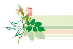 Het Bloemenelement van Horisontal stock illustratie