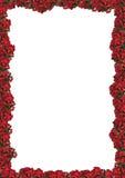 Het bloemenframe van Chrismas stock fotografie