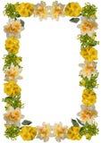 Het bloemenframe van de lente Royalty-vrije Stock Afbeeldingen