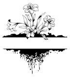 Het bloemenframe van Grunge Royalty-vrije Stock Fotografie