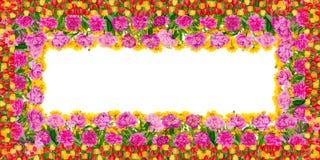 Het bloemenkader van de de zomerverjaardag Stock Afbeeldingen