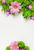 Het bloemenmodel van de groetkaart Royalty-vrije Stock Foto