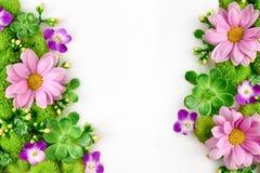 Het bloemenmodel van de groetkaart Royalty-vrije Stock Afbeeldingen