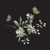 Het bloemenpatroon van de borduurwerktendens met kersenbloesem en butterfl Stock Afbeelding