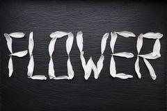 Het bloemwoord wordt geschreven met witte bladeren op zwarte Stock Foto