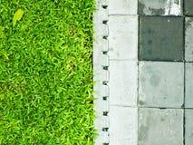 Het blok van het gras en van het cement Stock Afbeeldingen