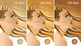 Het blondehaar kleurt grafiek stock illustratie