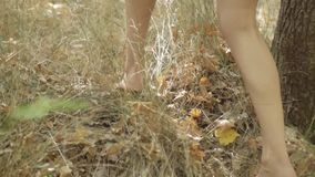 Het blootvoetse meisje loopt door het bosclose-up van voeten lopend op gras in langzame motie stock video