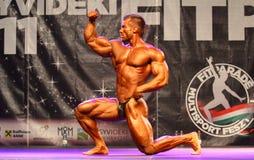 Het bodybuilding kampioenschap van Fitparade Stock Foto's