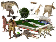 Het boek en de dieren Stock Foto